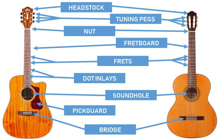 parts of the guitar diagrams for acoustic and electric. Black Bedroom Furniture Sets. Home Design Ideas