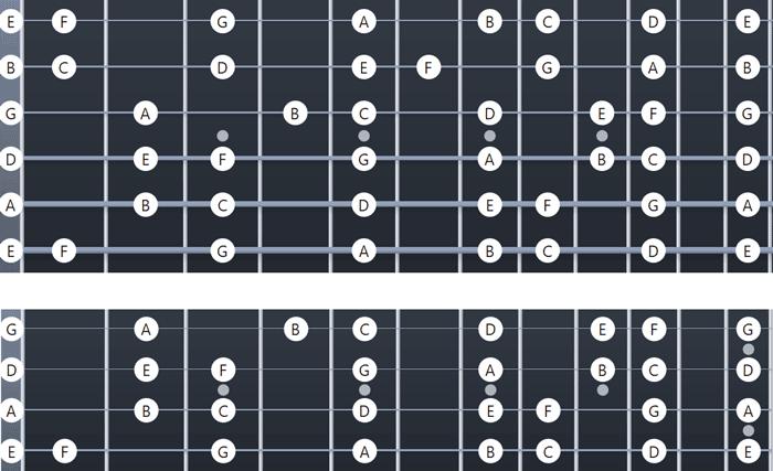 Bass vs Guitar Fretboards