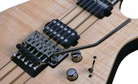 Floyd Rose on a guitar