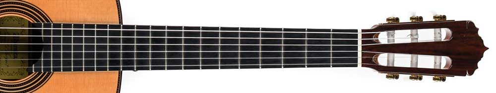 Guitar fretboard no dots
